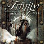 Various Artists - The Trinity Compilation CD 2 (Hidden Sanctuary)