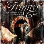 Various Artists - The Trinity Compilation CD 3 (Starvox)