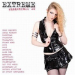 Various Artists - Extreme Sundenfall Volume 12 (2CD)