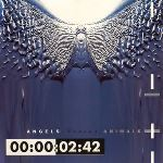 Front 242 - Angels Versus Animals